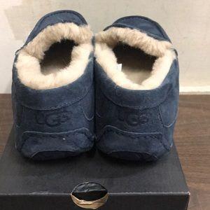 UGG Shoes - Men's UGG Ascot New Navy